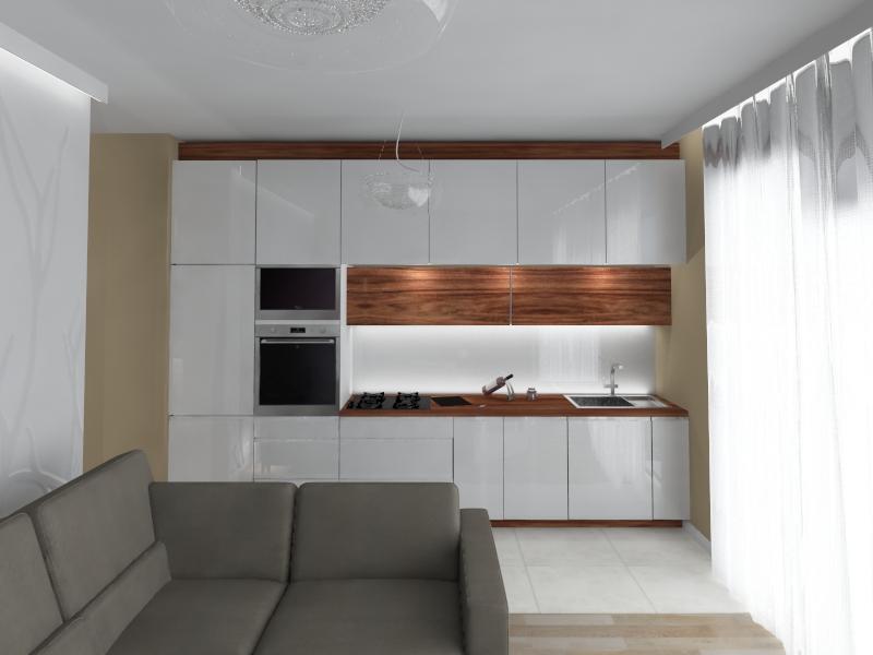 aneks kuchenny w mieszkaniu (1)