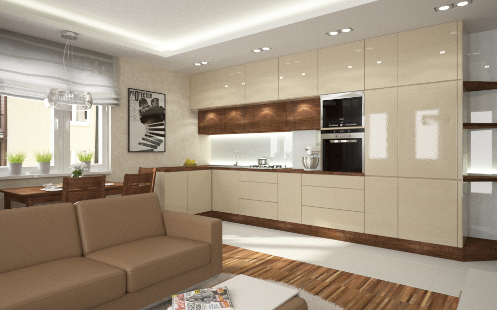 aneks kuchenny w mieszkaniu (4)